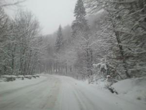ninsori 300x225 Se intorc ninsorile! Avertizare meteo pentru mai multe judete