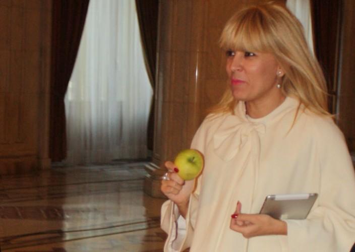 Udrea 2 RICA PETRESCU 704x500 Scapa de arestul preventiv. ICCJ: Elena Udrea, in arest la domiciliu