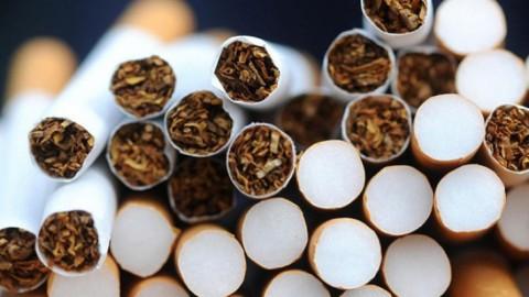 tigari Peste patru tone de tutun, confiscate dintr un foc