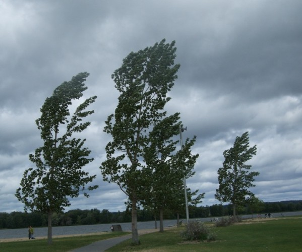 vant atentionare cod galben 599x500 Avertizari de la meteorologi: vant puternic in mai multe zone din tara