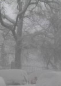 iarna vijelie polei 300x153 214x300 COD PORTOCALIU. Meteorologii anunta vant de peste 100 km/h. Apelul IGSU pentru oamenii din zonele vizate