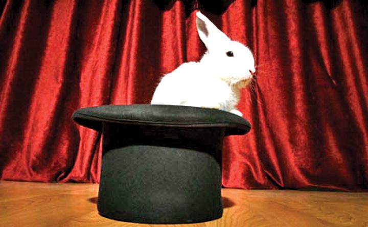 "iepure in palarie DNA ii scoate de urechi pe ""iepurasii"" politicienilor din consiliile de administratie"
