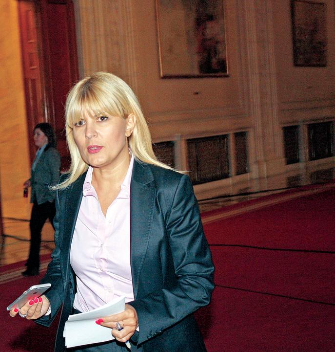 ELENA UDREA Udrea reclama Romania la CEDO