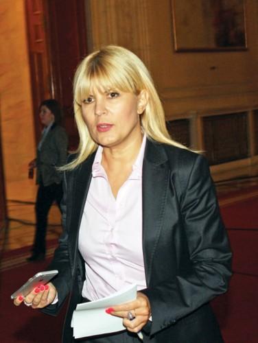elena udrea4 376x500 Elena Udrea si Ioana Basescu au trecut pe la DNA. Udrea: E un dosar facut sa fie trimis, in campanie, in judecata