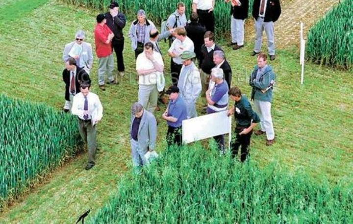 terenuri agricole straini Fermierii se opun vanzarii terenurilor catre straini