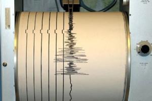 seismogr Cutremur luni dimineata in zona Vrancea