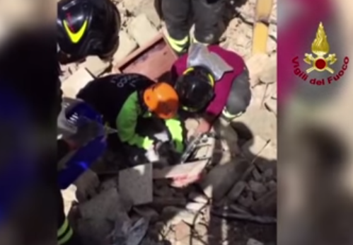 pisi Gasita in viata, printre ruine, la 15 zile dupa cutremurul din Italia! (VIDEO)