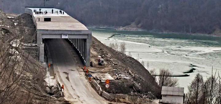 proiecte Strainii interzic firmele romanesti!