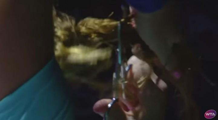 tunde 2 720x398 Kuznetova si a taiat parul in timpul meciului, apoi a revenit in joc si a castigat! (VIDEO)