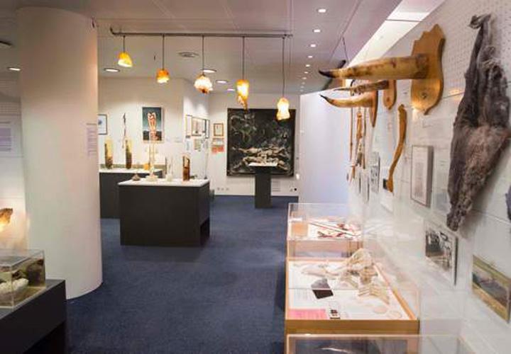media xll 9293205 Bine ati venit la muzeul penisului!