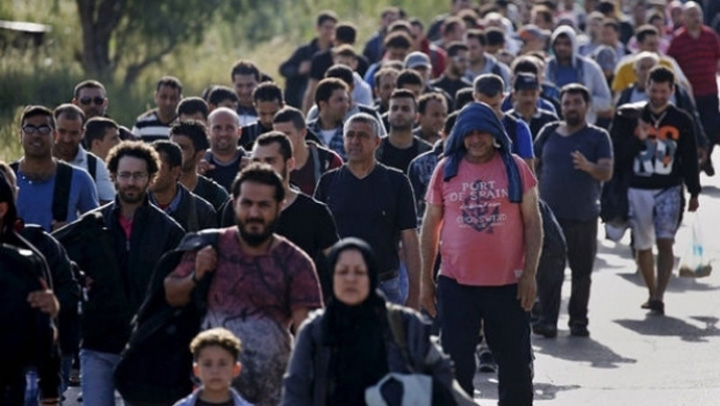 Ni se baga pe gat 20.000 de sirieni