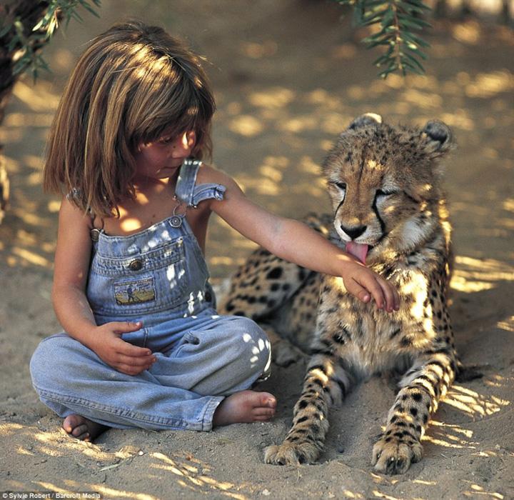 fetita Tippi, fetita junglei