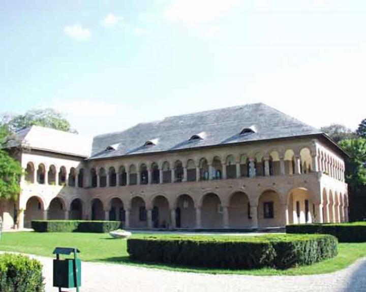 """palatu A inceput """"Pandelizarea"""" Capitalei!"""