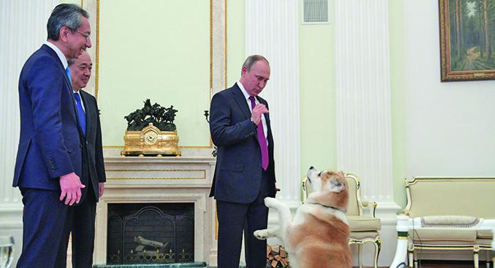 putin Putin isi pune cateaua pe japonezi