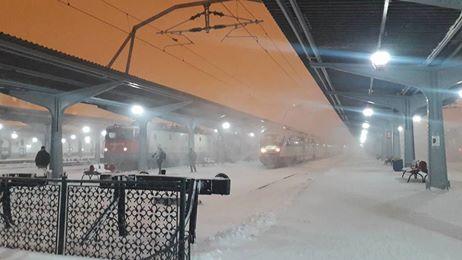 15941253 1899719513589597 6105373282207982358 n tren viscol Efectele revenirii ninsorilor: Zeci de trenuri anulate si intarzieri pe calea ferata