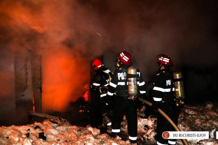 16105783 1751099124915972 5708544844322310091 n circ 720x480 Incendiu la un adapost pentru animale al Circului din Capitala: 11 dintre ele au murit