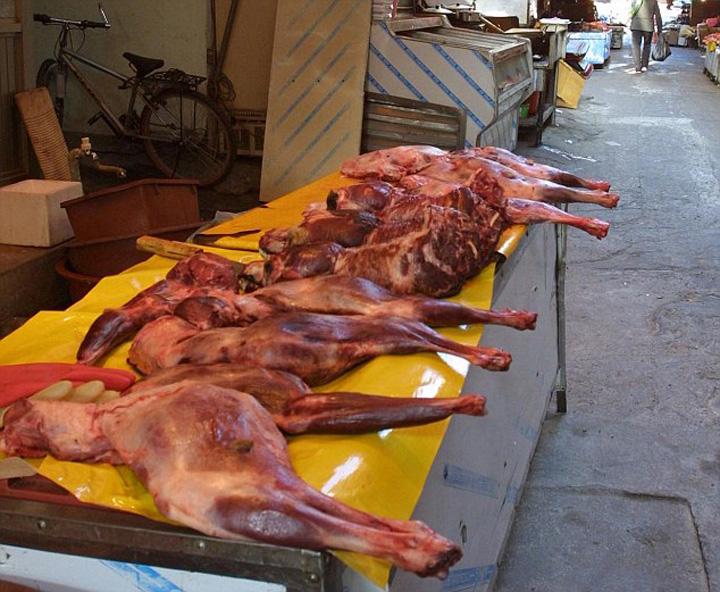 carne caine Tiranul Kim Ir Sen papa carne de catel de doua ori pe zi