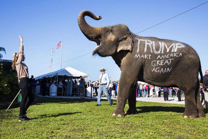 truimp slogan Trump nu e un Vadim altoit cu Becali