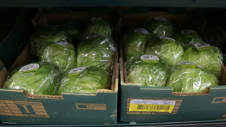 legume Britanicii rationalizeaza legumele