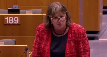 norica Europarlamentarii romani au analizat protestele, la Bruxelles