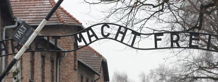 auschwitz In  pielea goala la Auschwitz