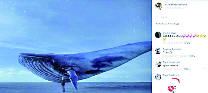 balena Castigatorul Balenei Albastre se va sinucide!
