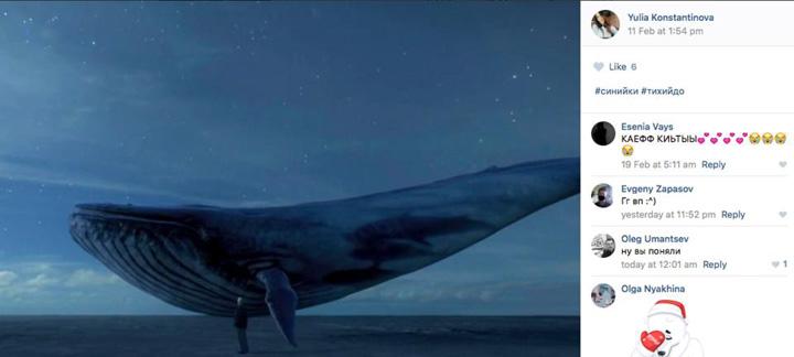 balena1 Balena Albastra a ajuns la Putin