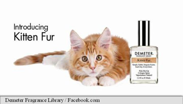 imageResize 2 Parfum cu miros de … blana de pisica
