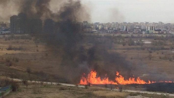 incendiu 2 Incendiu in Delta Vacaresti, pompierii au intervenit de urgenta