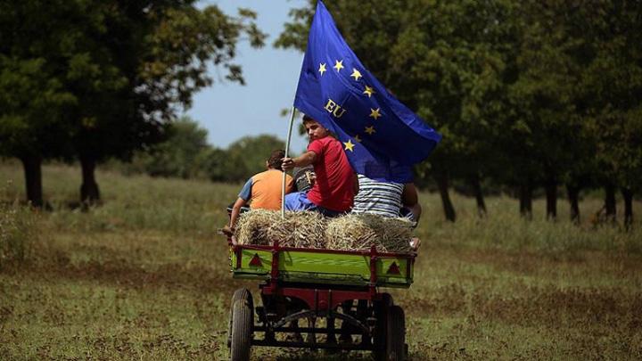 steag Europa fierbe. Romania doarme
