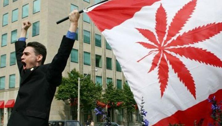 CanadaWeed Peste 4,6 milioane de oameni vor fuma 655 tone de marijuana!