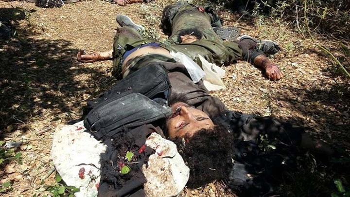 jihadisati morti Culmea terorismului: Jihadisti ISIS, masacrati de mistreti
