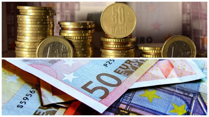 euro leu 12559100 Grindeanu pe faras, leul, in cap
