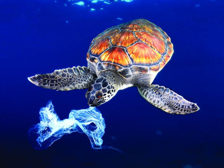 medalion plastic Stam pe 8,5 miliarde de tone de plastic