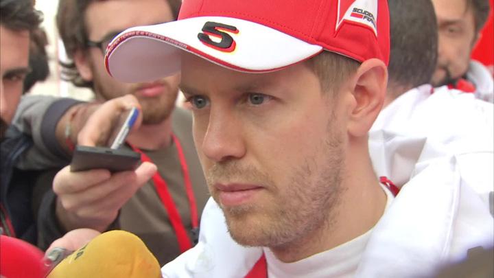 vettel Sebastian Vettel, iertat de FIA