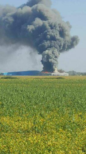 21105923 1667808359950823 6370761764168190493 n incendiu 281x500 Incendiu cu o degajare masiva de fum, la o hala din Timis