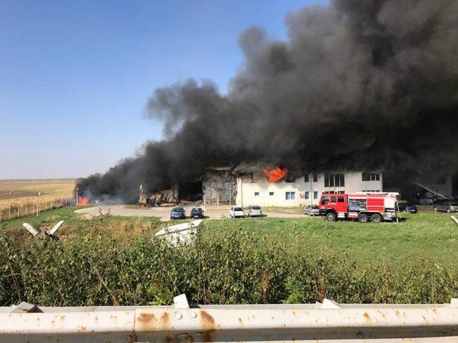 21106315 1667807893284203 4035764058976629683 n incendiu 667x500 Incendiu cu o degajare masiva de fum, la o hala din Timis
