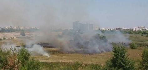 incendiu Incendiu de vegetatie, cu mai multe focare, in Delta Vacaresti. Au intervenit pompierii