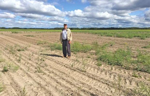 serbia pamant agricol SOC! Serbia nu mai vinde pamant arabil cetatenilor UE!