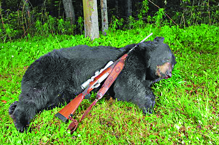 ursu Ursul lui Trump, 30.000 euro teapa pentru Pahontu