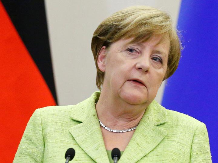 merkel 2 Merkel ne arata pisica
