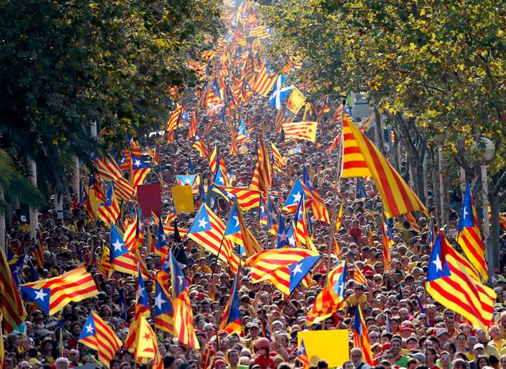 catalonia mare 3 Catalonia, pusa in colivie