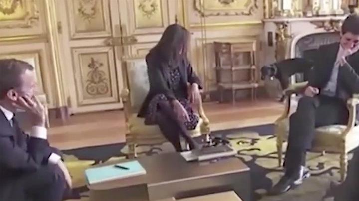labrador 1 Cainele lui Macron a facut pe Elysee