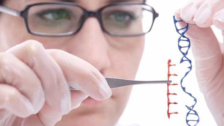 adn uman modificat genetic scopuri stiintifice Premieră mondială: au modificat ADN ul unui om