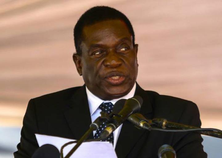 crocodil Zimbabwe inlocuieste leul cu crocodilul