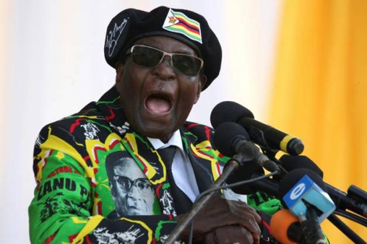 mugabe 1 Pleaca, Mugabe!