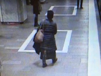 incid 1 350x264 Suspecta in cazul incidentului reclamat vineri la metrou, prinsa. Are 57 de ani