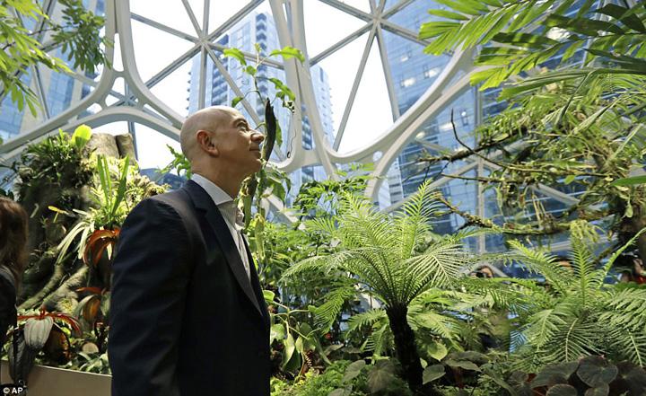 amazon 2 Amazonul lui Bezos e Amazon pe bune