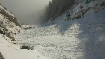 cautari dupa avalansa 350x197 Tanarul disparut in avalansa din Bucegi, cautat de salvamontisti cu caini special antrenati