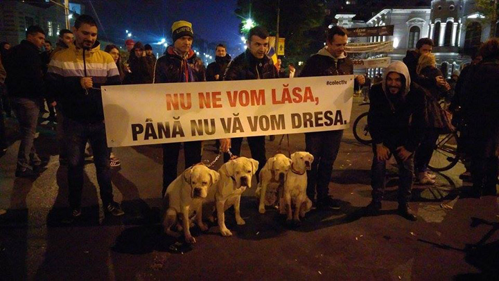 proteste universitate Protest impotriva nimicului